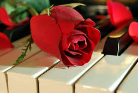 piano tag wallpapers nature passion music love song flower