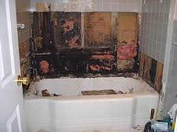 Bathtub Wall Liners Avoid These Bathroom Remodeling Mistakes