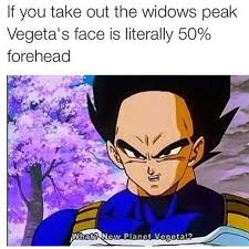 Dbz Meme - 20 hilarious dragon ball memes you ve always wished for dorkly post