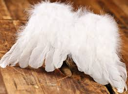 8 white feather wings wings doll supplies