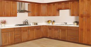 Replacing Kitchen Cabinet Doors Only Kitchen Contemporary Kitchen With Stock Cabinets Replacement