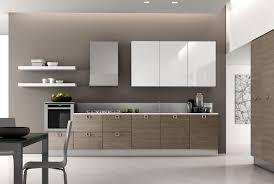 European Cabinet Pulls Kitchen Cabinet Kitchen Cabinet Refacing Modular Kitchen Wood