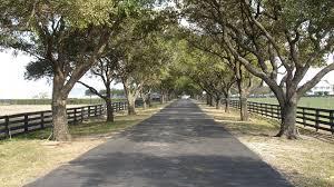 Southfork Ranch Dallas by Series Tag Wallpapers Outdoors Nature Dallas Trees Drive Ranch