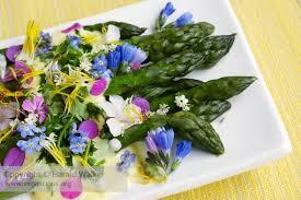 edible flower garnish asparagus with saffron sauce and edible flower garnish