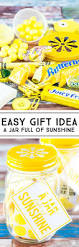 53 Coolest Diy Mason Jar Gifts Other Fun Ideas In A Jar Diy Joy 303 Best Gifts In A Jar Or Cup Images On Pinterest Easter Treats