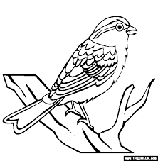 prehistoric mammals coloring pages dudeindisneycom eyebrowed