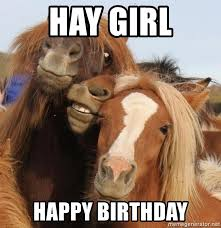 Horse Birthday Meme - happy birthday horse meme mne vse pohuj