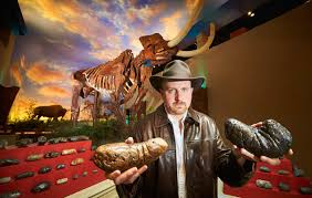 fossilised collector enters guinness world records 2017 book