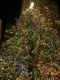 christmas christmas tree disposal nyc in nycchristmas