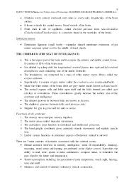 Gross Anatomy Of The Brain And Cranial Nerves Worksheet 2 The Central Nervous System