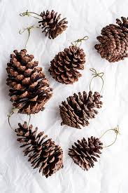 snowy sparkly pine cone ornaments half baked harvest