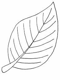 coloring pages of leaf shapes coloring pages leaf shapes new mix jovie co