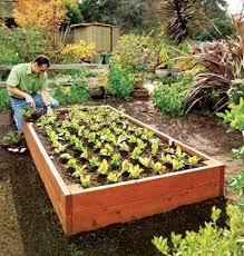 624 best landscape garden u0026 outdoor living ideas images on