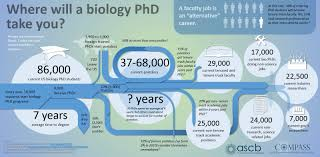 Phd Candidate Resume Sample by Top Alternative Phd Science Careers The Grad Student Way