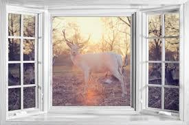 huge 3d window view wild deer stag woodland nature wall sticker huge 3d window view wild deer stag woodland nature wall sticker poster m2 294