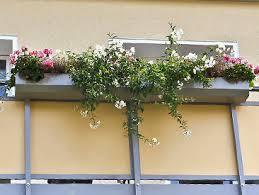 balkon blumenkasten der balkonblumenkasten blumenkastenhalterungen die balkonbauer