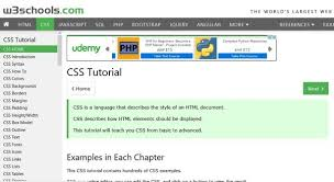 css tutorial w3schools pdf what is the best way for a beginner to learn html css quora