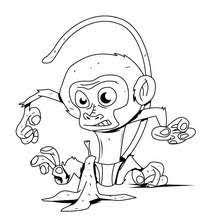coloriages coloriage d u0027un portrait de singe fr hellokids com