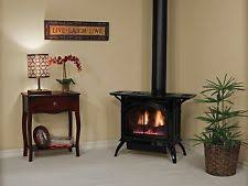 Free Standing Gas Fireplace by Gas Stove Fireplace Ebay