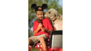 dogs welcome at select walt disney world hotels starting oct 15