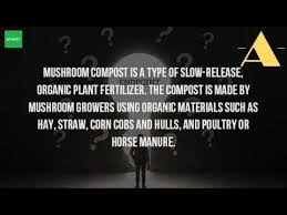 what is mushroom compost used for youtube
