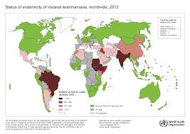 Where Is Nepal Located On The World Map by Who Leishmaniasis