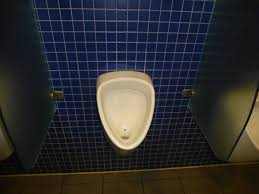 Urinal Dividers Oh Those Crazy Germans Why Evolution Is True