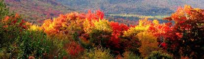 enjoy autumn season hampshire traveler magazine