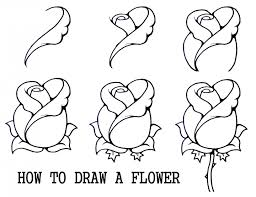 tag easy to draw hawaiian flowers step by drawing and sketches