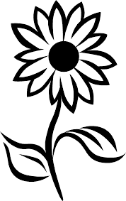 simple black and white sunflower drawing clipart panda free