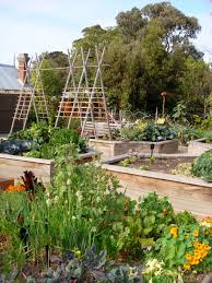 trellis ideas for raised garden beds organic veges 4 health