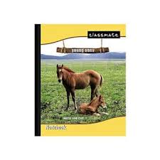 classmates notebook online purchase online classmate king size notebook for 12 prices shopclues india