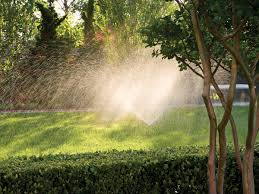 check your irrigation system southern living