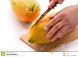 knife positioned for a first cut through a papaya stock photo