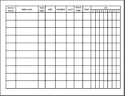 Daily Report Sheet Template Cna Daily Report Sheet Instant