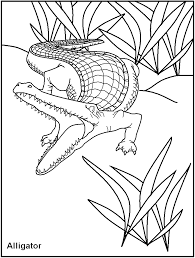 free printable dangerous animal coloring pages great for kids