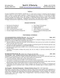 Business Development Coordinator Resume Samples Visualcv Resume by Esl Application Letter Editing Service Uk Best Dissertation