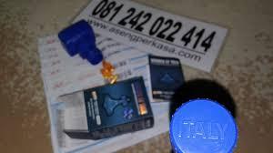 alamat toko hammer of thor di pontianak 081242022414 obat herbal