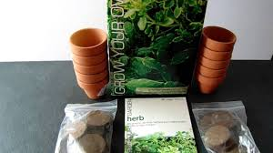 grow your own herb garden kit youtube