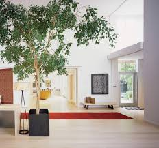 Tree Floor L Tree Modern With Light Wood Floor Entry Modern And L Listed