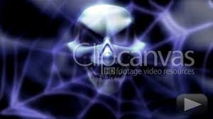 skull spider web stock footage hd 372654 clipcanvas