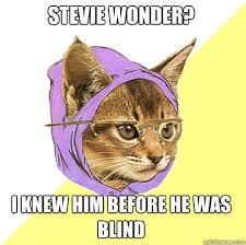 Stevie Wonder Memes - stevie wonder cat meme cat planet cat planet