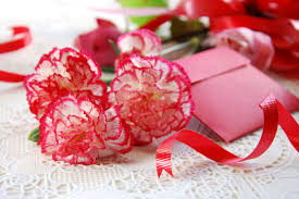 Flowers Colors Meanings - carnation flower meaning flower meaning