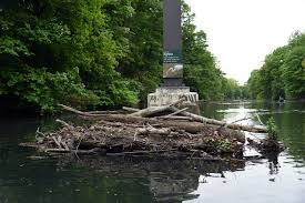 canoeing along the restored bronx river curbed ny