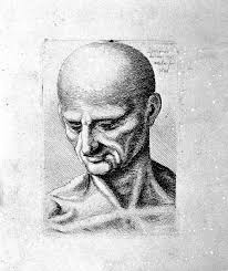 file leonardo da vinci engravings of some anatomical drawings