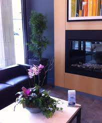 Interior Designers In Ma by Beverly Ma Office Plants Service Interior Design U0026 Maintenance