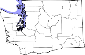 State Of Washington Map by File Map Of Washington Counties Blank Svg Wikimedia Commons