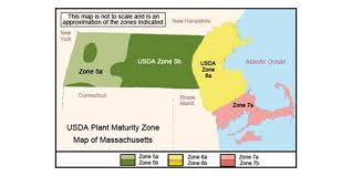 Weather Zones For Gardening - 7 steps to starting your own garden this spring discover central