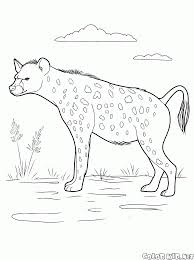 coloring page wild animals