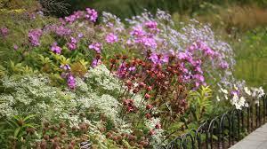 seasonal walk opened september 2014 at the new york botanical